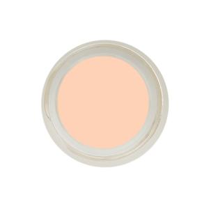 inika makeup inika organic full coverage concealer shell